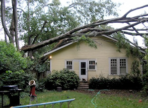 Nationwide Claims Phone Number >> Storm & Flood Damage Cleanup | Skyline DKI | Chicago and ...