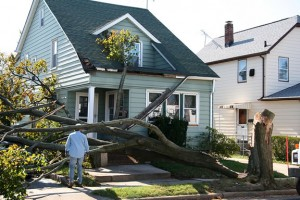 Oak Lawn Wind Damage